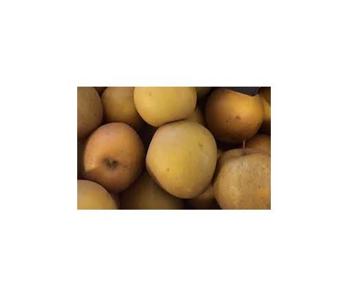 Pomme Bertane