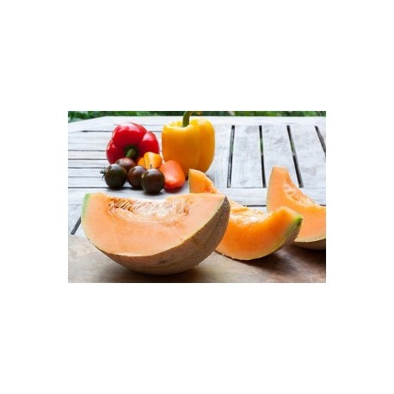 Melon du Bénac